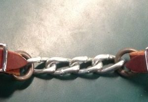 Kyle tack Cheaney curb chain